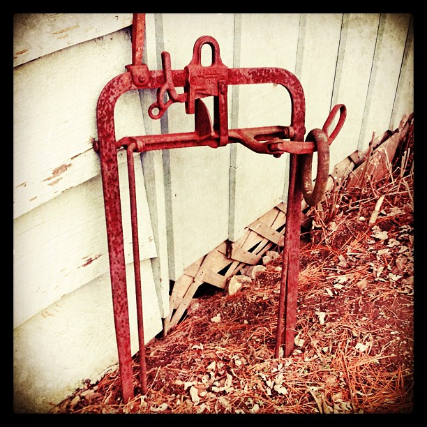Apr 11 - Something Rusty {a hay bale holder; found in our work shed} #photoaday #rusty #farmtools #princeedwardcounty @missyfowler47