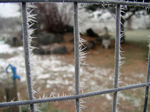 FrostFence