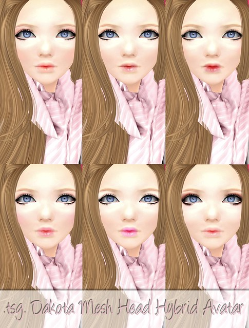 NEW TSG Dakota Mesh Head Hybrid Avatar