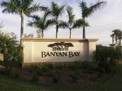 Banyan Bay