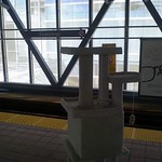 Transporting a Cat Tower on the Skytrain