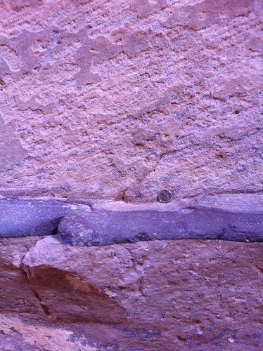 Vein of manganese oxide-infused sandstone? Petra, Jordan (February 2013)