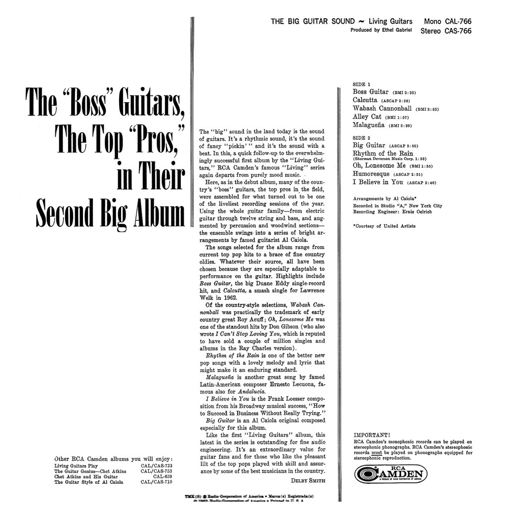 Living Guitars - The Big Guitar Sound
