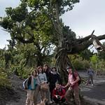 Guatemala, Volca?n Pacaya ascenso 02