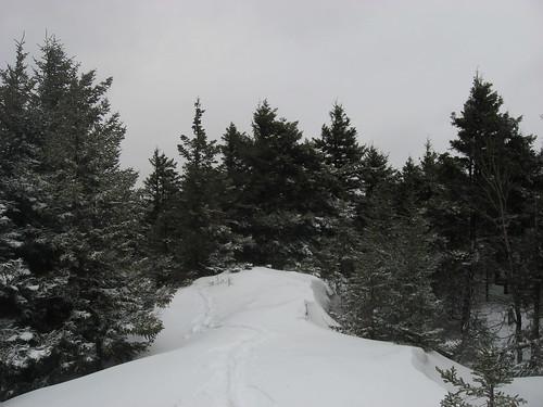 Taconics snowshoeing