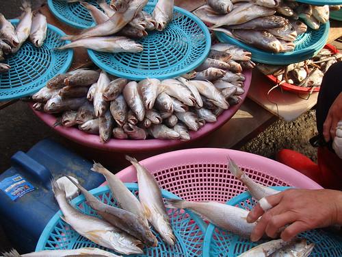 Gijang market