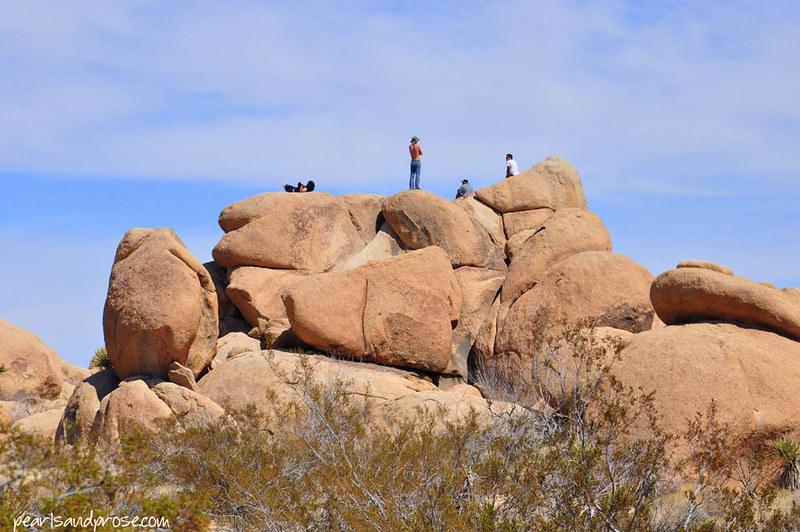 joshua_boulders_web