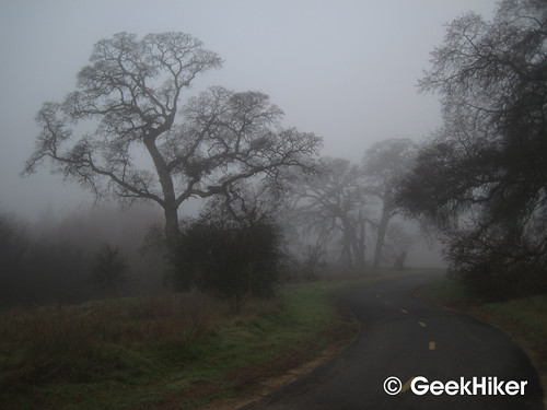 Bike_Trail_Fog_03