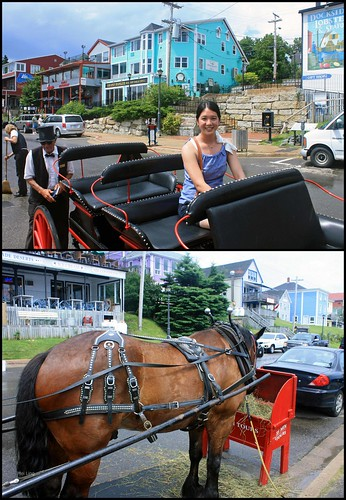 Trot in Time tours