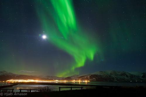 Aurora Borealis Sauðárkrókur