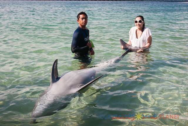 Beach Encounter with Dolphin-6.jpg