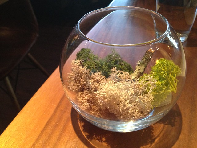 Mixed lichen centerpiece - Chambers Eat + Drink