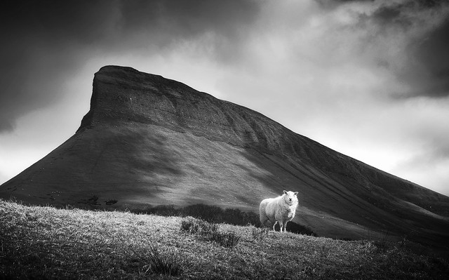 Under the Shadow of Benbulben #2