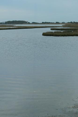 Assateague State Park - Sinepuxent Bay