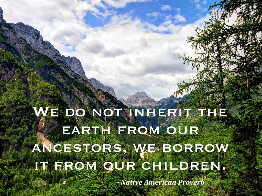 Image result for earth quotes