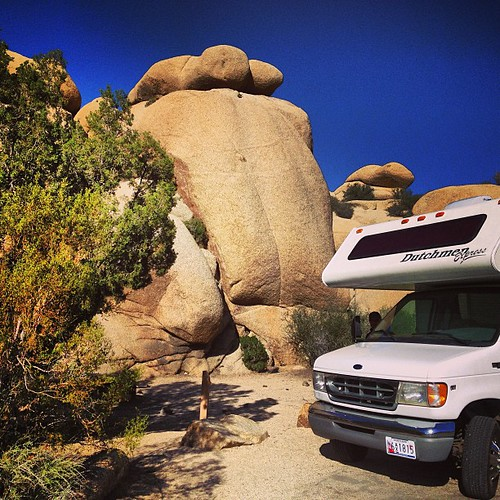 Our sweet campsite last night! #nationalparks #joshuatree