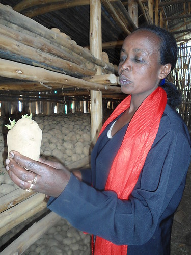 Worknesh, inside her potato storage