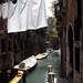 venezian morning