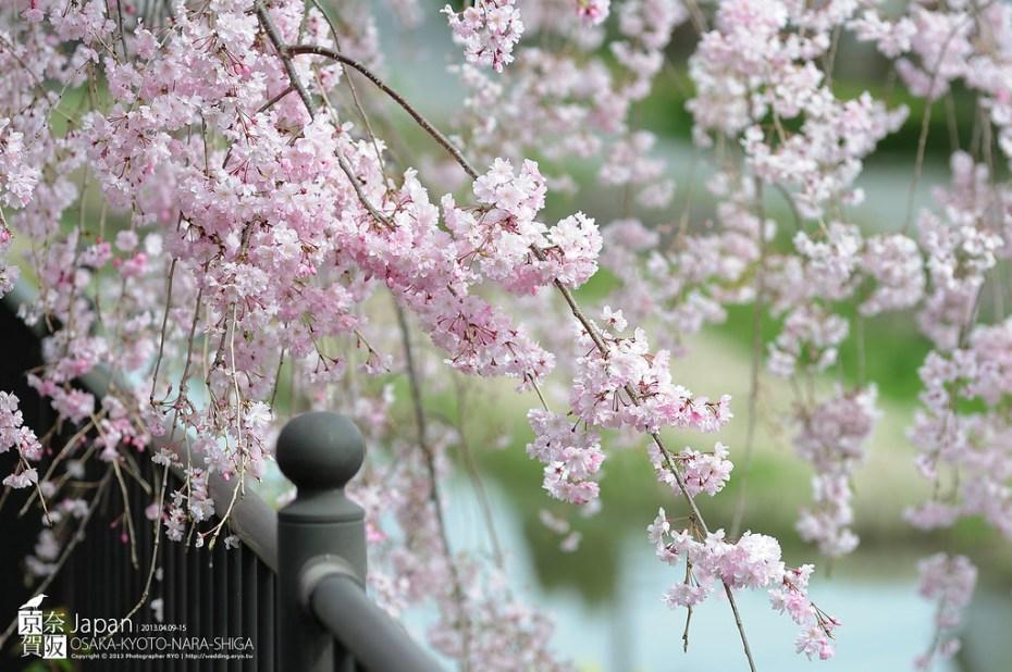 Japan-0188