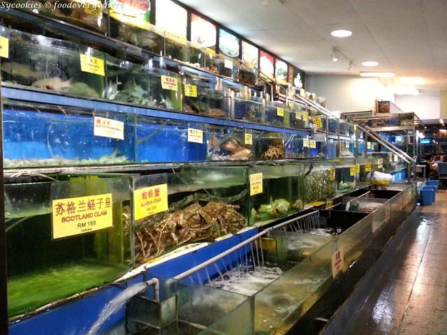 18.fresh unique seafood (5)