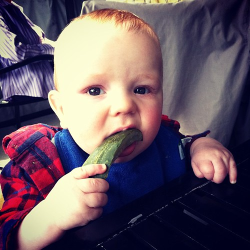 #finneganfrancis is a cheap date. Just chomping a pickle spear.