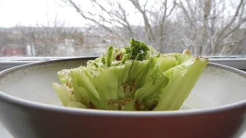 Lettuce Trick 2