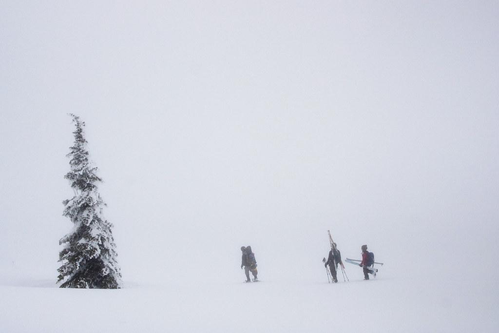 Camp Muir Snow Field