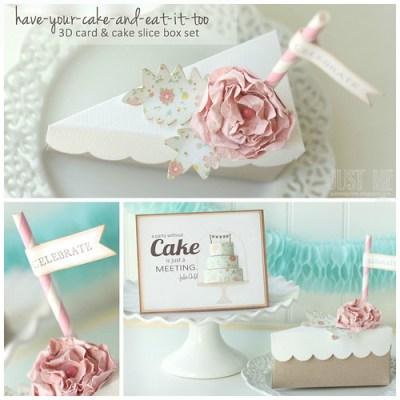 Shabby chic cake and cake slice box set