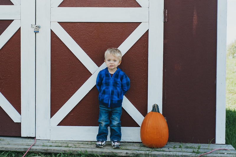 PumpkinPatch2013-43