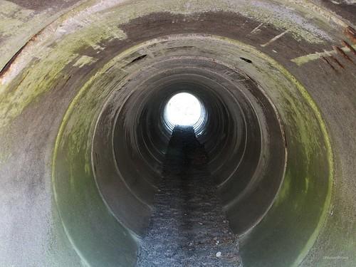 Deer tunnel underE25 Gemmatorp