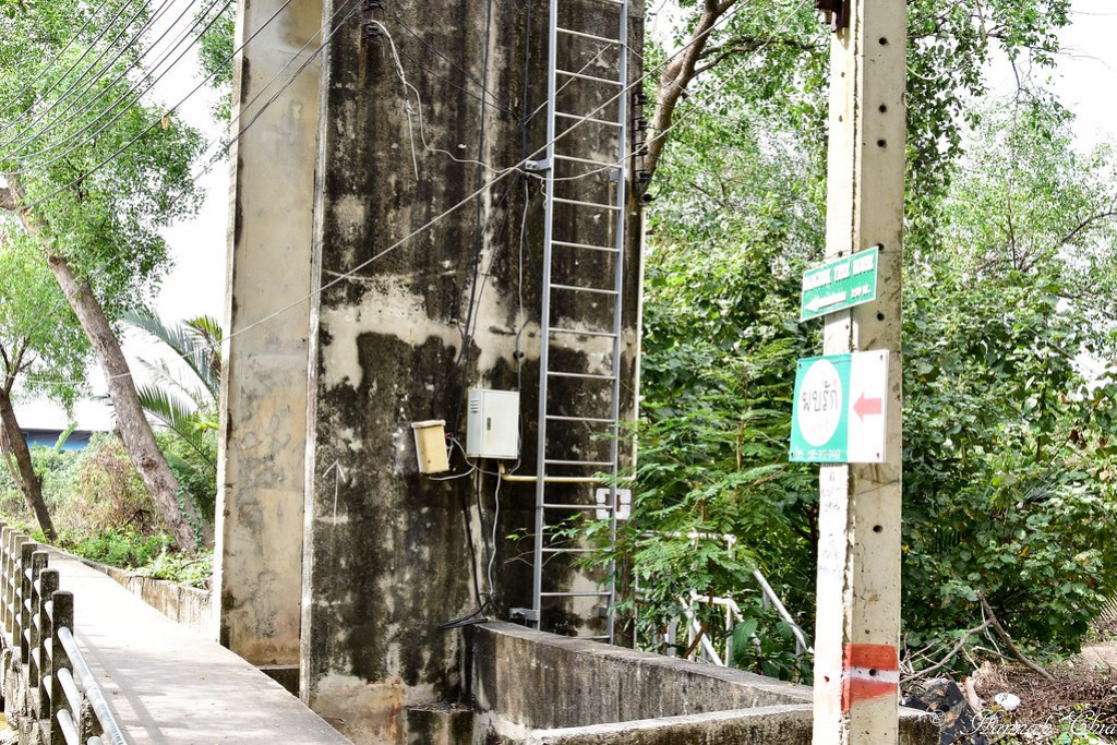 Bangkok Tree House-87