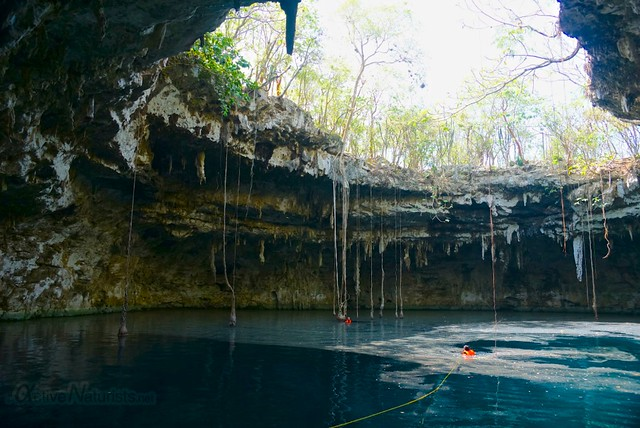 naturist 0001 cenote Xoch, Yucatan, Mexico