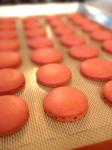 Macaron Class (they have FEET!!!)