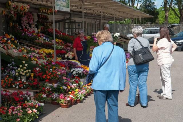 原本想買束花去向偶像致意的