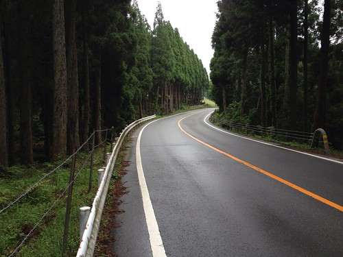 Road to the top of Mt. Aso