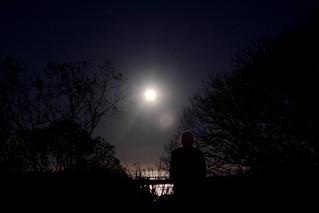 IMG 3149 Full Blue Moon