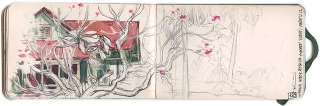 Sketchbook ~ National Botanical Gardens 1