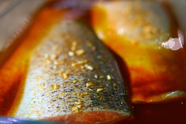Salmon Marinade
