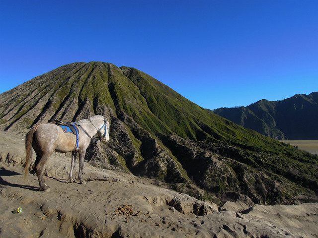 View from Mt. Bromo