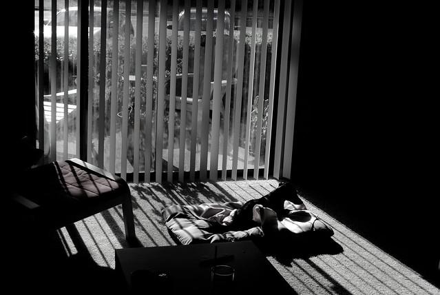 [211/366] Sunbeams