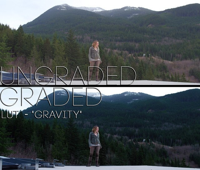 Gravity - inspired LUT