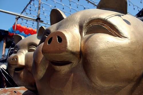 Busan pigs