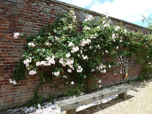 Girlaboutgarden Gardener Freelancer Londoner Page 2