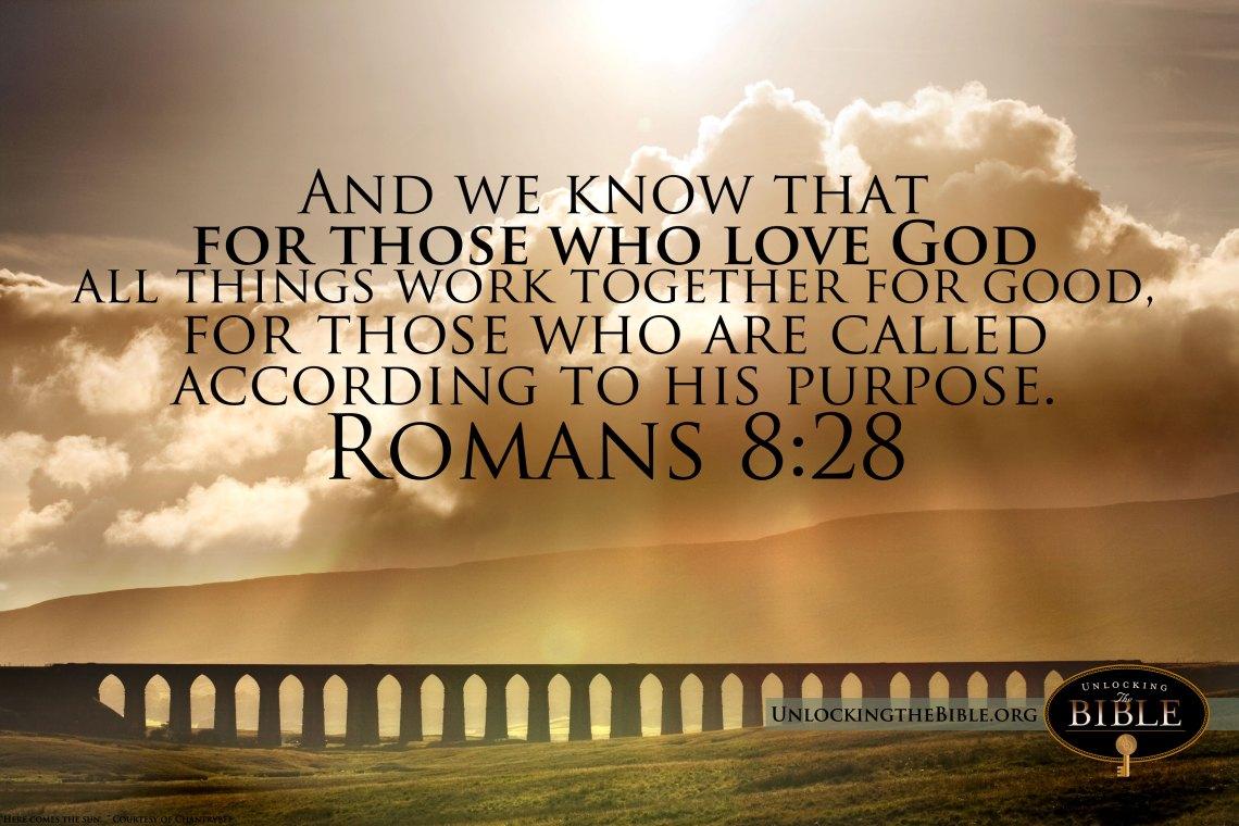 Bible Verses Wall