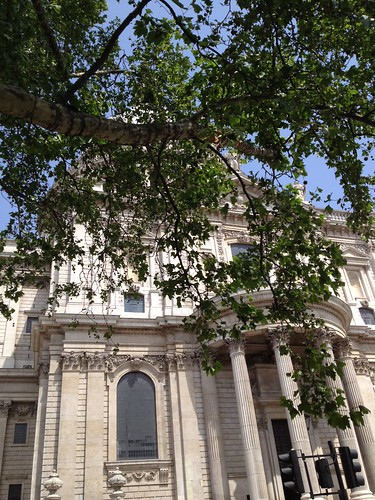 St Paul's and the Horsechestnut tree