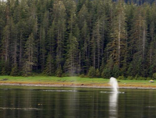 Whale- Juneau 2564 cu