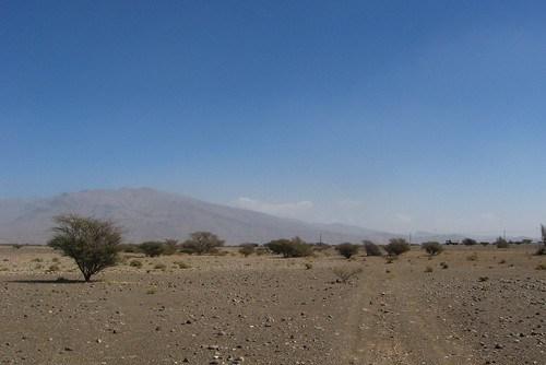 Gravel plain on the east Wahiba