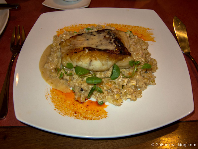 Grilled tuna medallion on quinoa and wild mushroom risotto at Sabor Color restaurant