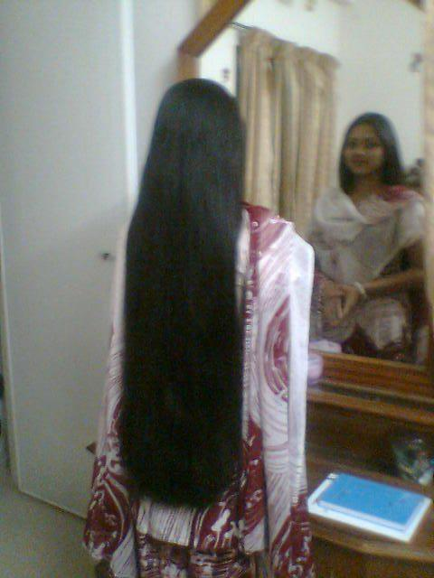 Kerala Longhair Beauties A Gallery On Flickr