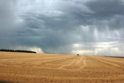 Much needed rain showers on the horizon